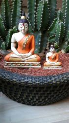 SIDDARTHA MINI